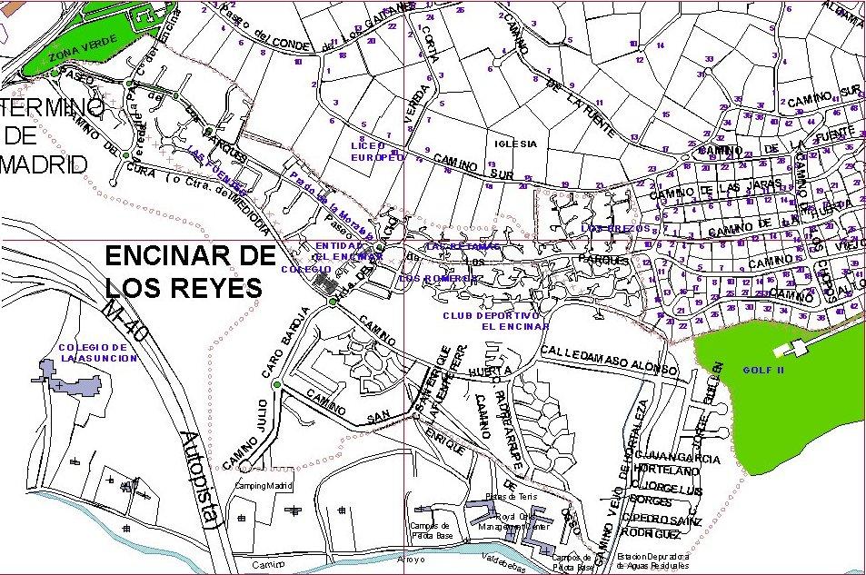 Logopedia a domicilio en el Encinar de los Reyes. Madrid